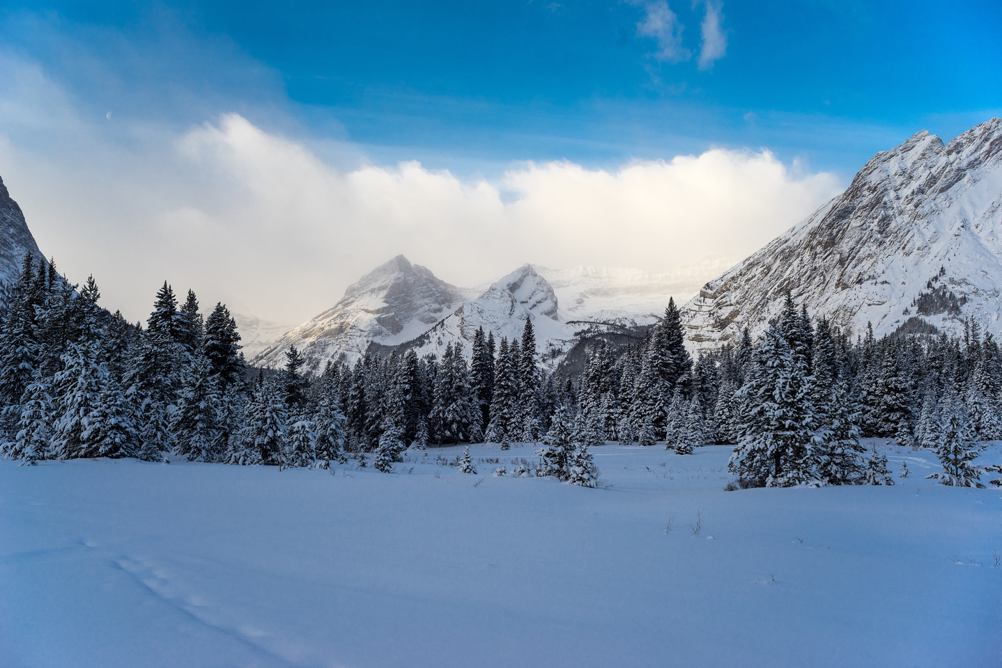 Snowshoeing back towards the Kananaskis Lakes.
