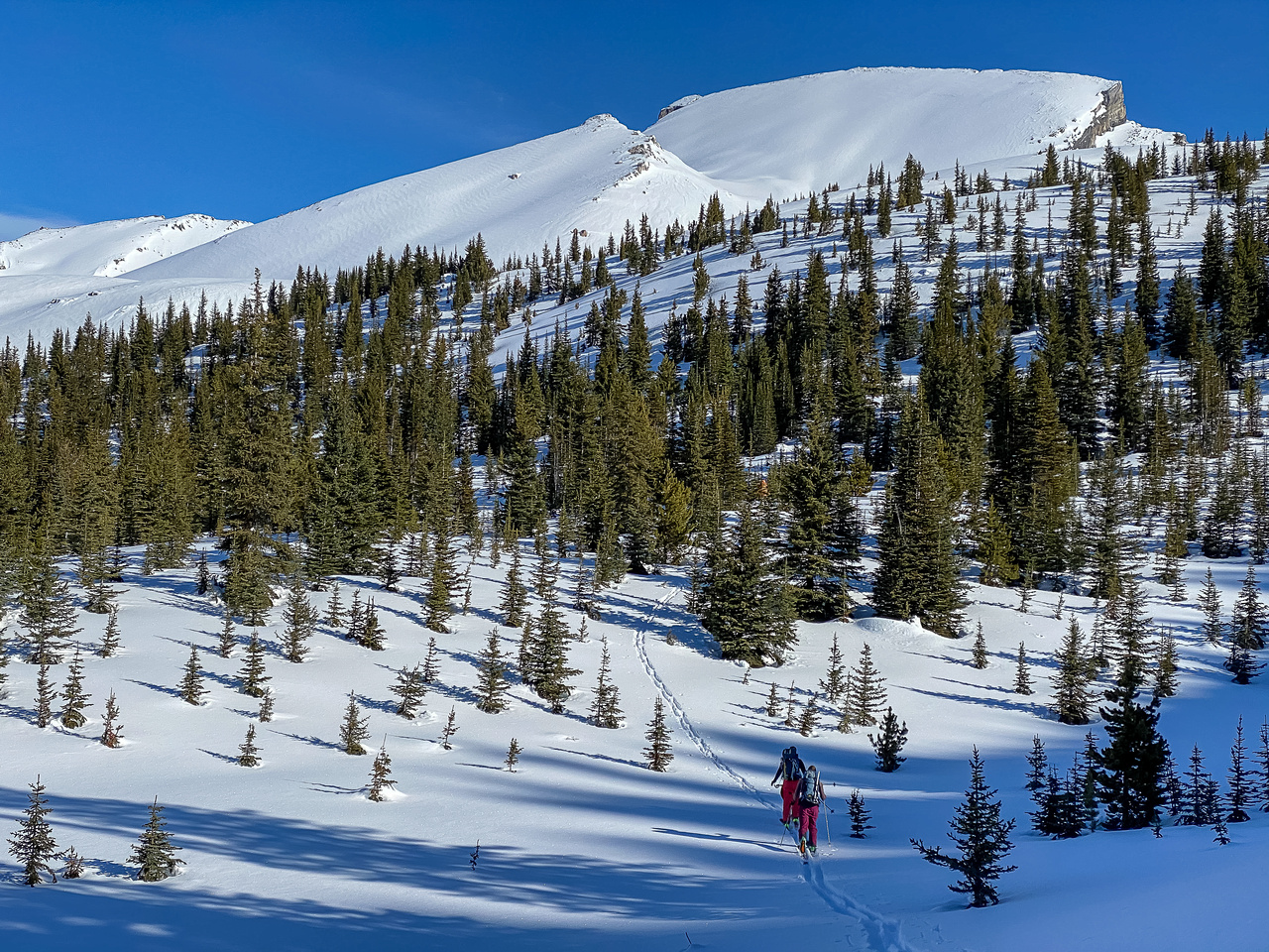 Skiing through the bowl SW of Quartzite Peak - looming above us here.