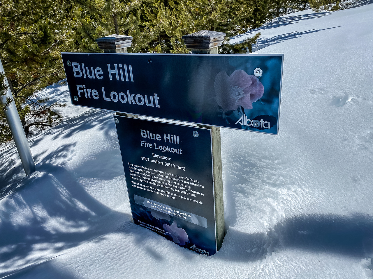 Blue Hill Lookout.