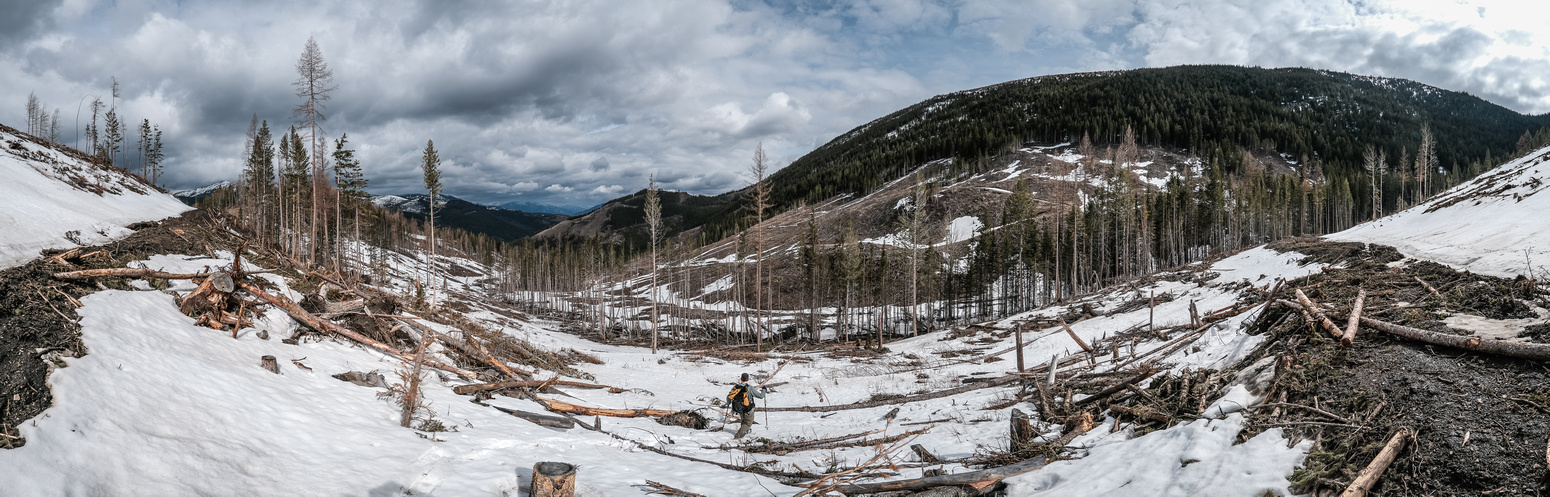 We exited the gully onto clearcuts and had some confusion about where to go with the snow patches.