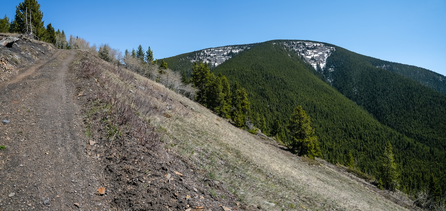 Views back up the south ridge of Greenhill Ridge (L) and up Bluff Mountain (R).