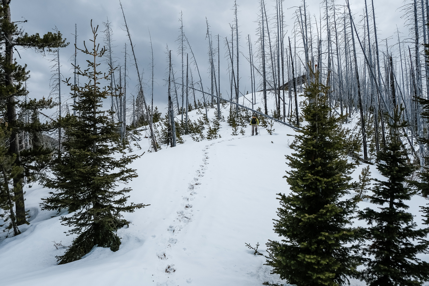 Following Wietse up snowy east slopes to the summit of Clubs Peak.