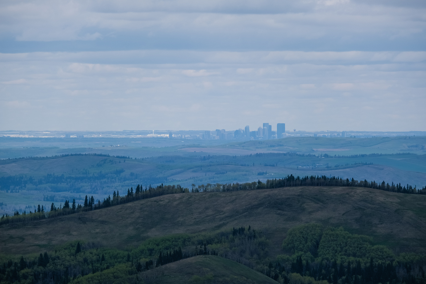 Views of Calgary from Forked Ridge.