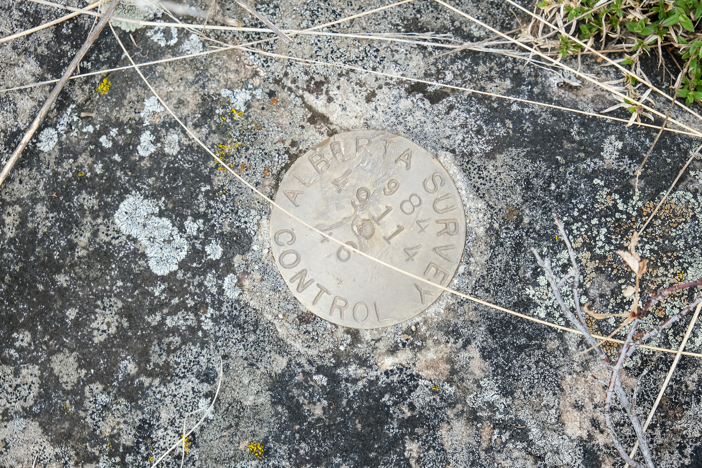 Another survey marker - I ran into a lot of these lately.
