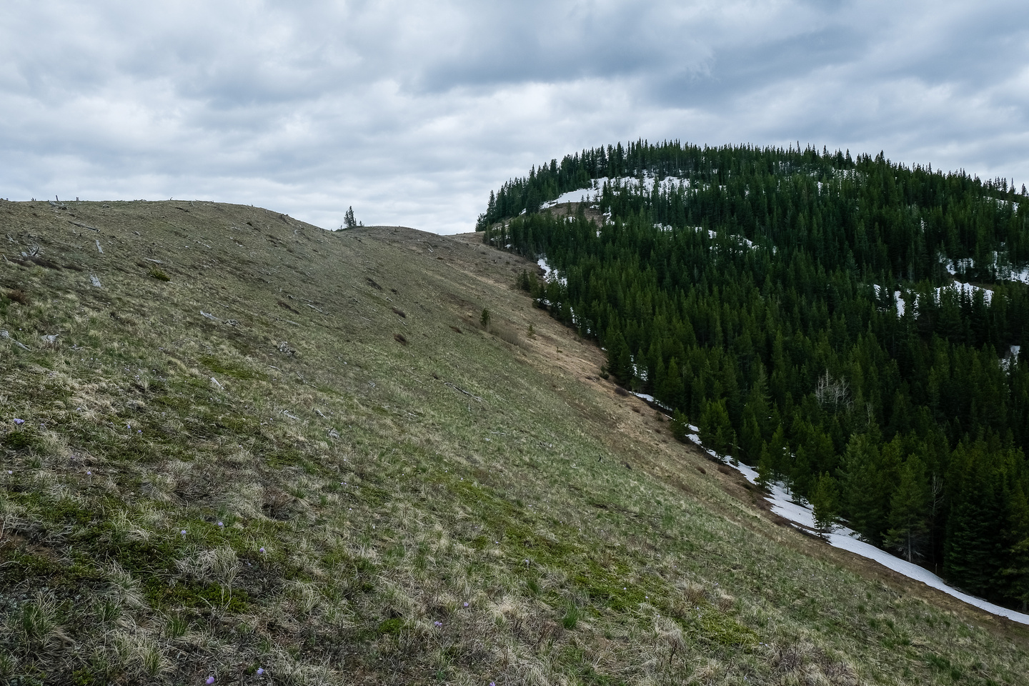 Views to the north summit.
