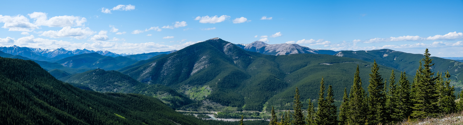 Great views north over a lush Elbow River to Prairie Mountain.