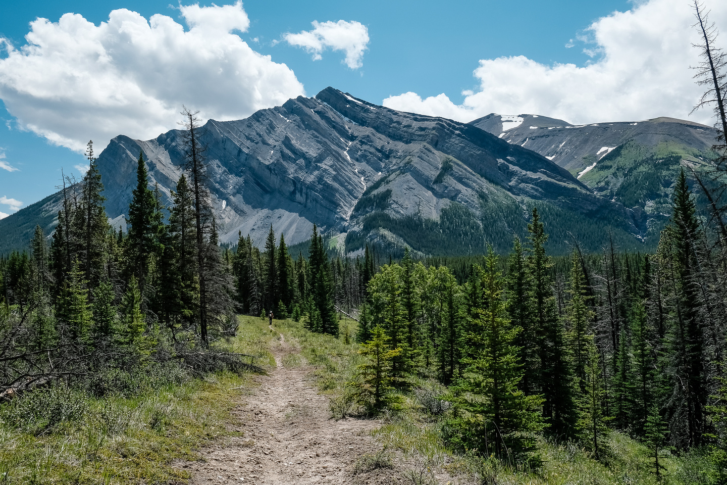 Hiking back along the Red Deer River nearing the Cascade fire road junction and Mount White.