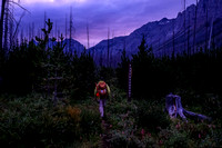 An early morning start to our day up the Middle Fork Trail.