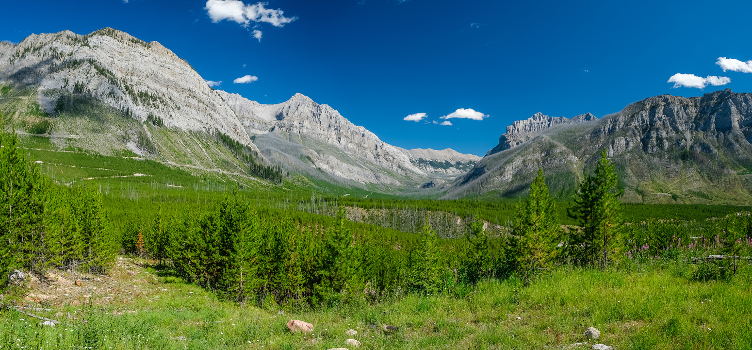 View from the Middle White-Sylvan Pass road to Maiyuk Pass.