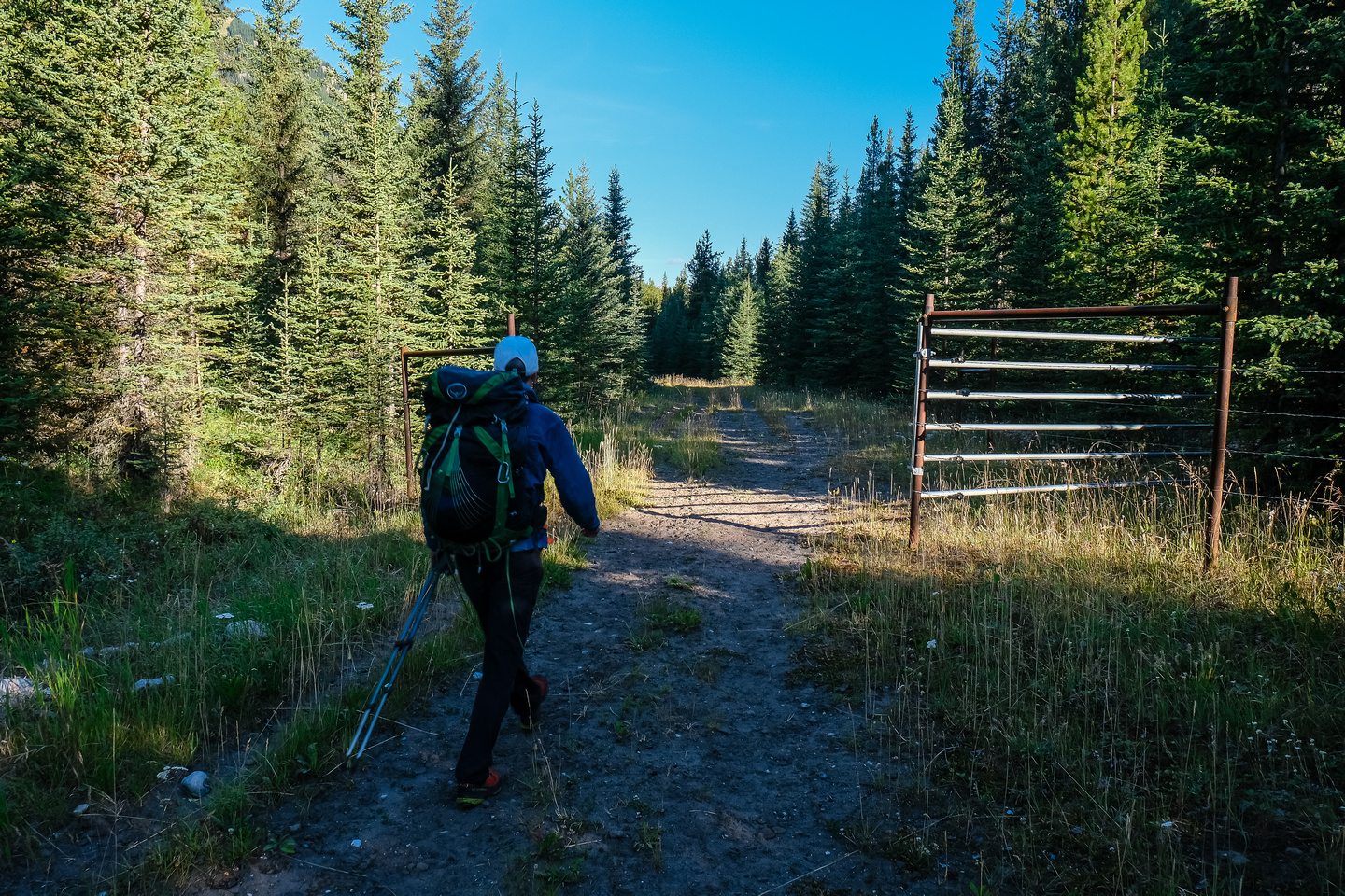 Starting our long hike up the Cascade Fire Road through the bison fence.