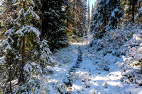 Hiking to Talc Lake on a carpet of fresh snow.