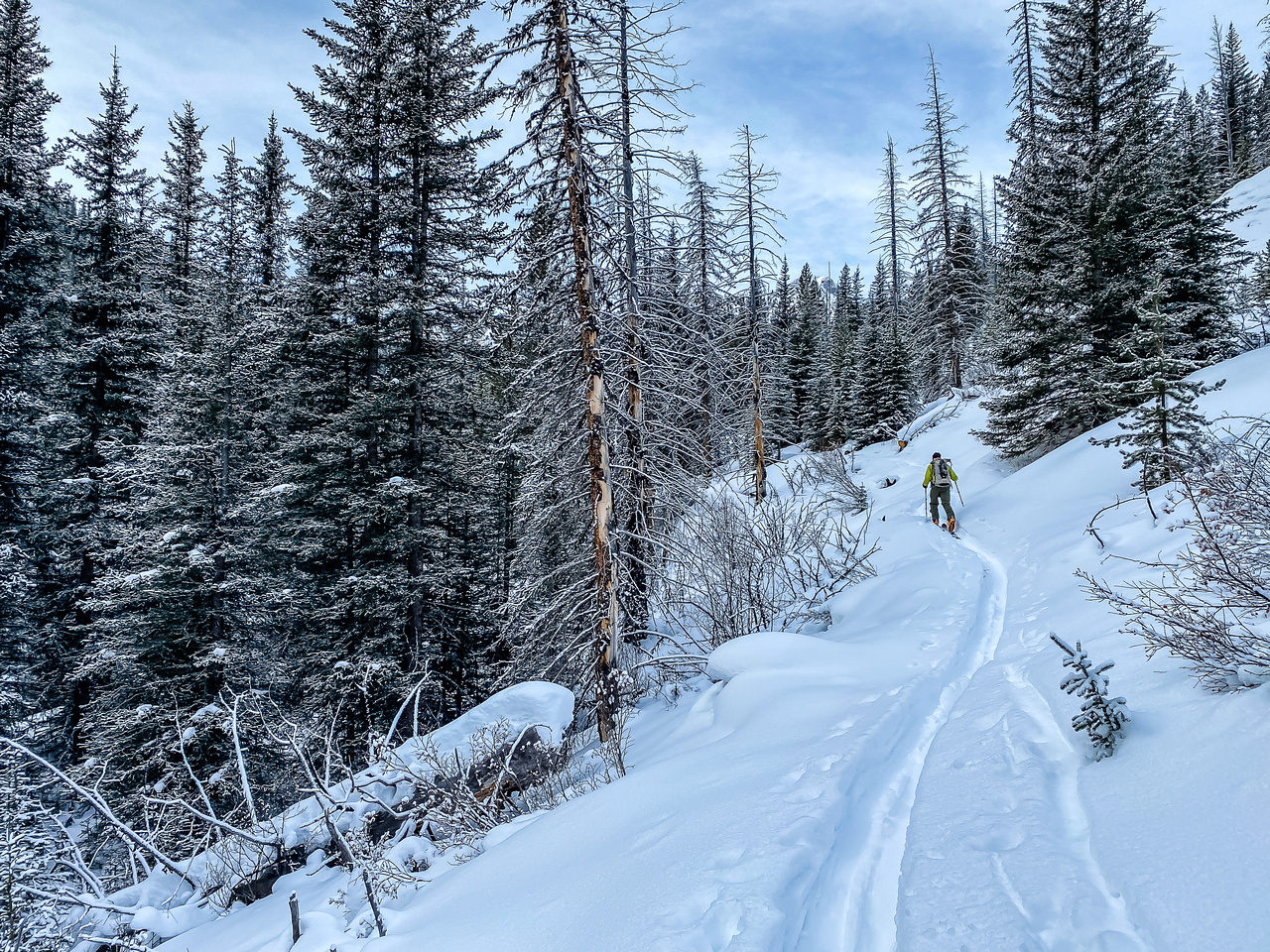 Skiing up the Elk Pass Trail.