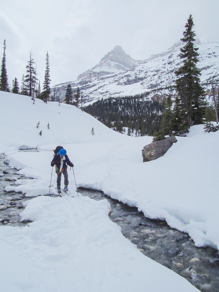 Crossing the inlet stream to Bow Lake.