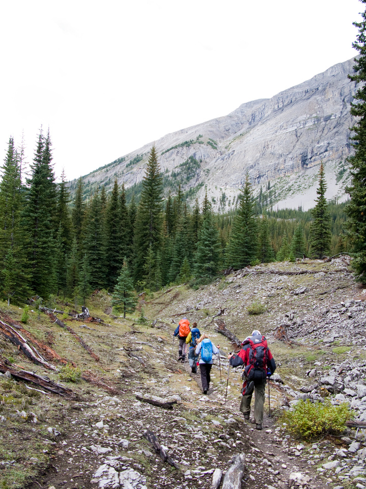 The group trudges up the horse trail to Assiniboine Pass.