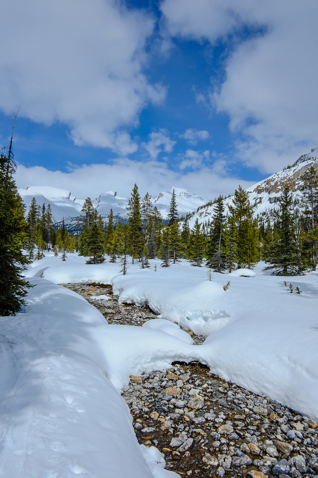 The ski back along the summer trail was very quick. Looking back at our mountain from the depproach.