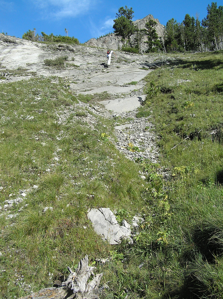 Ascending steep grassy slopes beneath the scree.