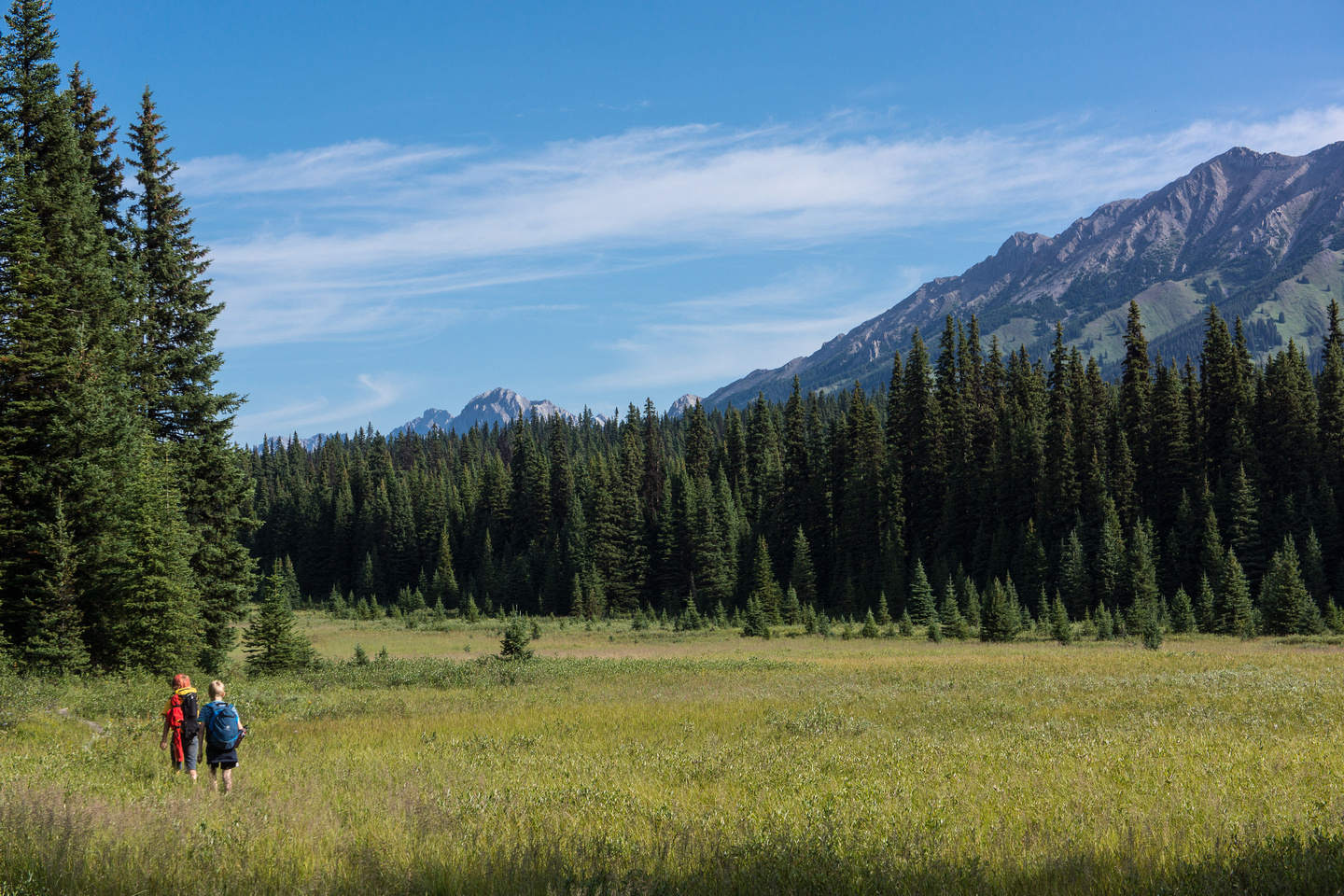 Hiking back up to Elk Pass.