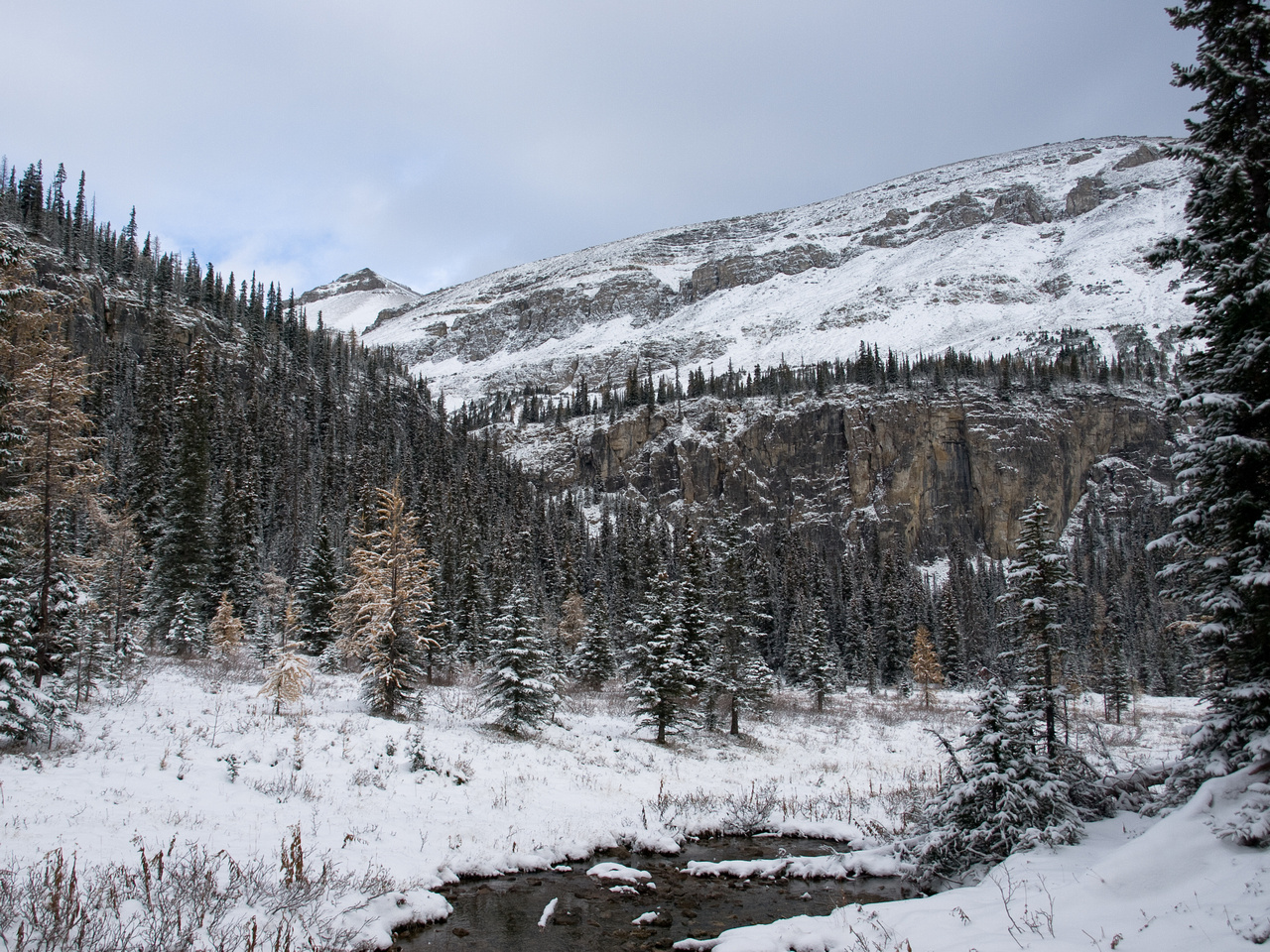 The trail between Tower and Rockbound Lake.