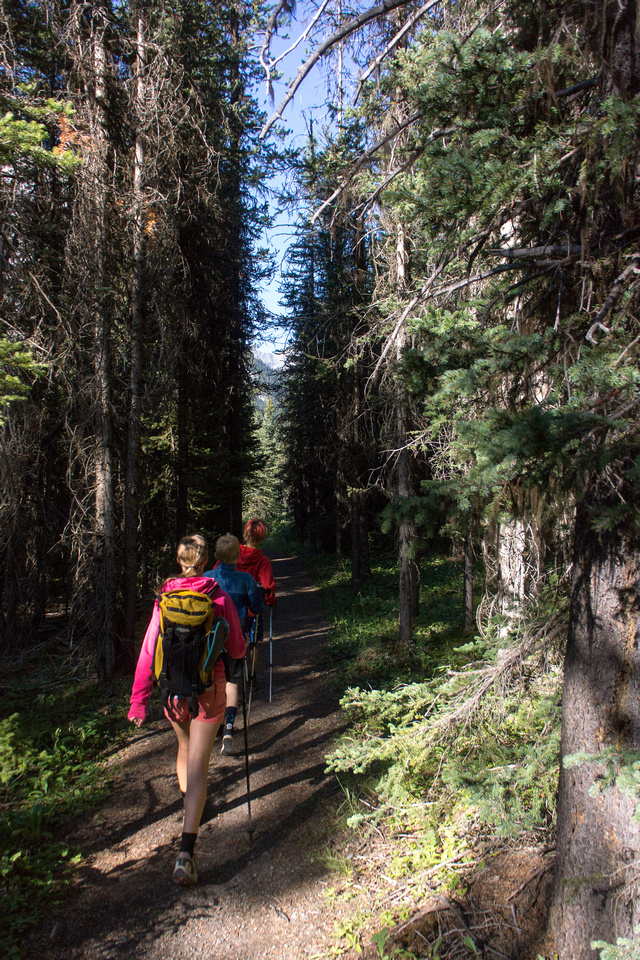Hiking to the Lower Elk Lake from the ACC hut. The trails are excellent in the park.