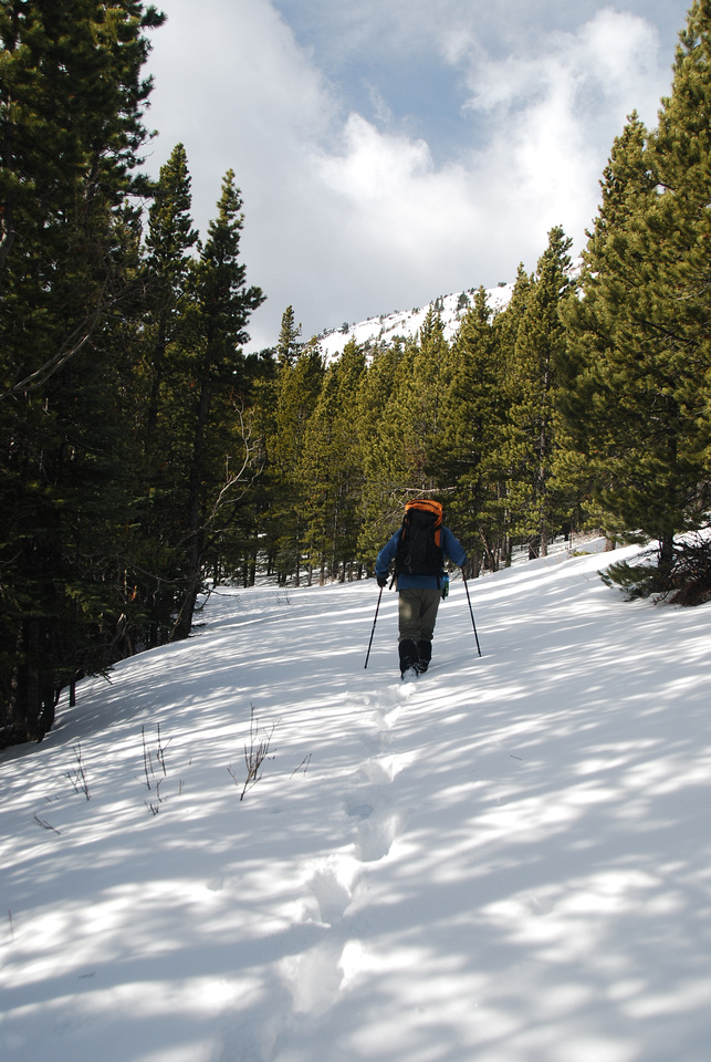 Sometimes we got lucky and the old ski tracks held our weight. It never lasted very long.