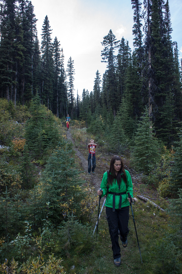Coming out onto the OTHER logging road that takes you pack to your car.