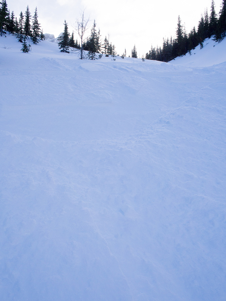 Skiing down to Commonwealth Creek.