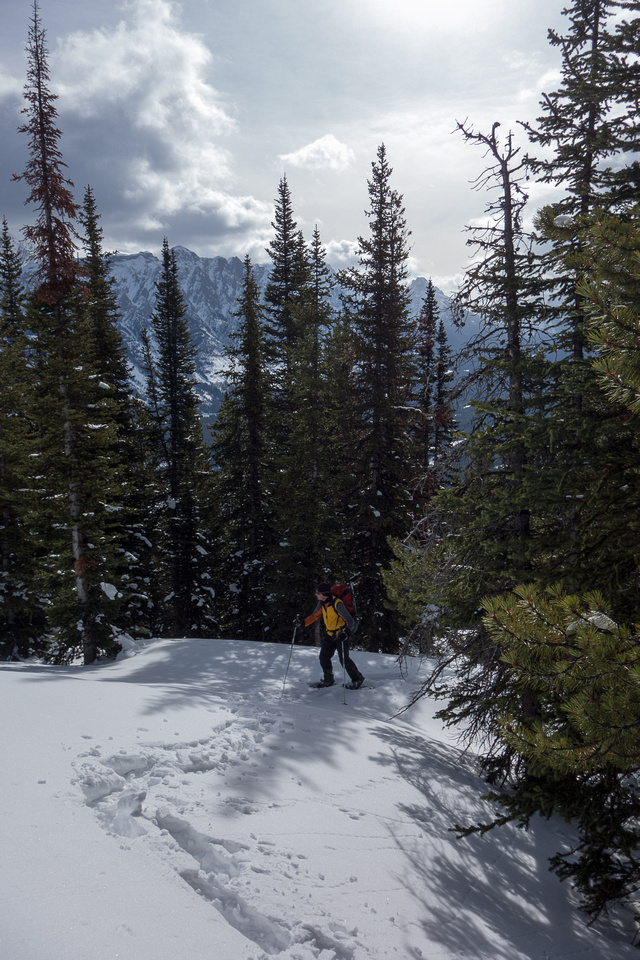 Raf follows my track as we break tree line and start to lose the trail thanks to drifting snow.