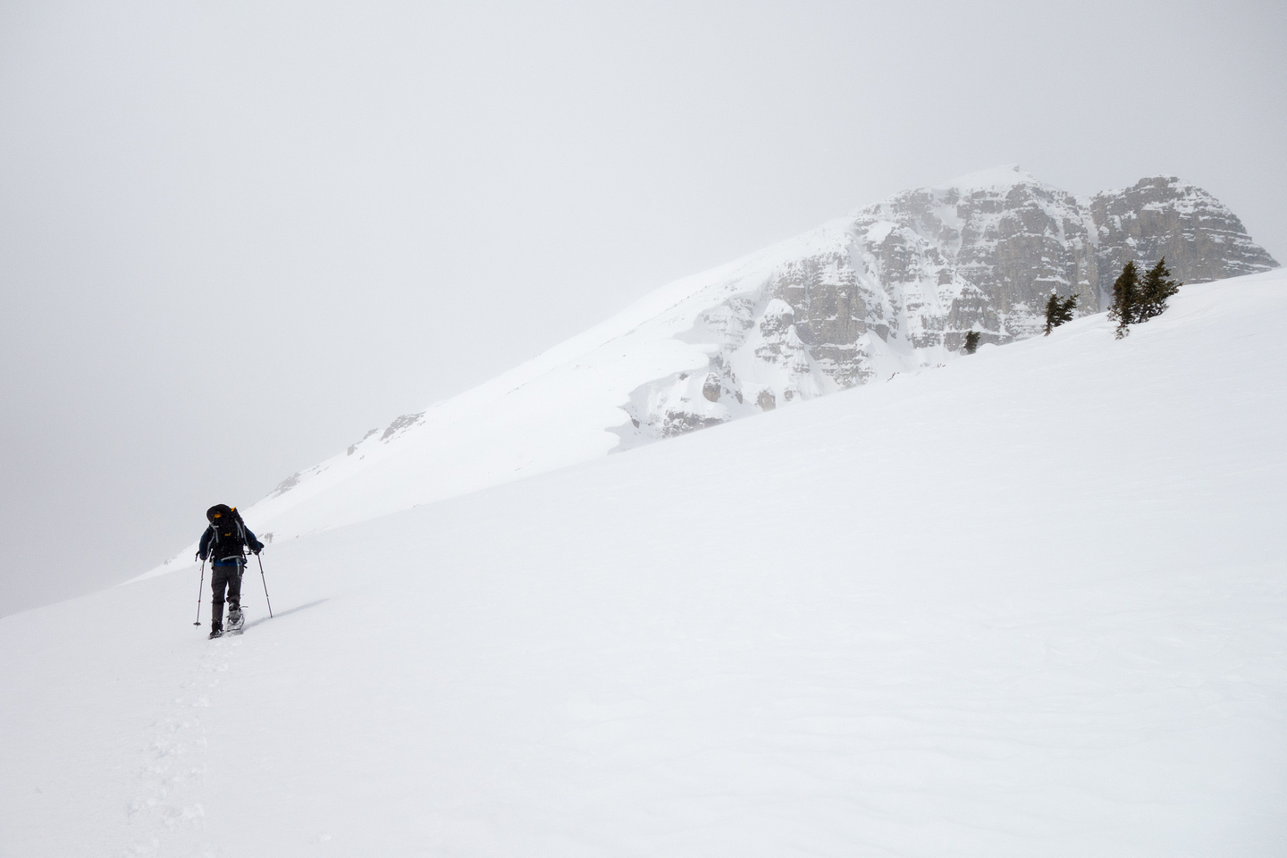 A grey, blustery day about tree line, but the slope ahead leads all the way to the summit so we're getting close.
