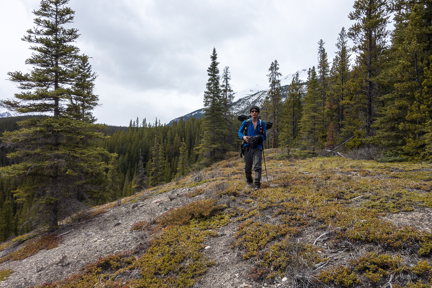We find a nice clear gravel ridge on our 'shortcut' down the south side of the east ridge.