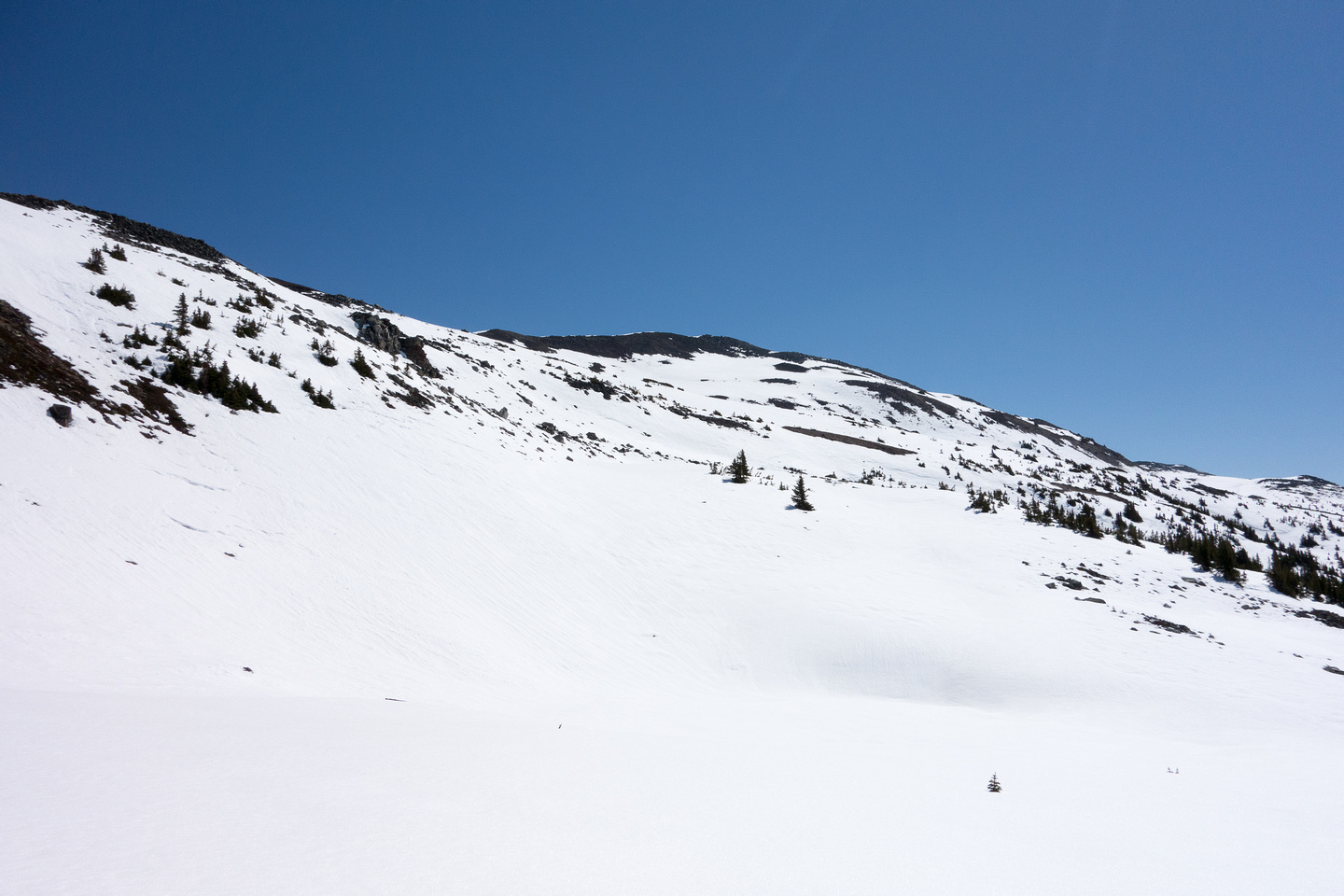 Looking up at the final ridge to the summit of Crystal Ridge.