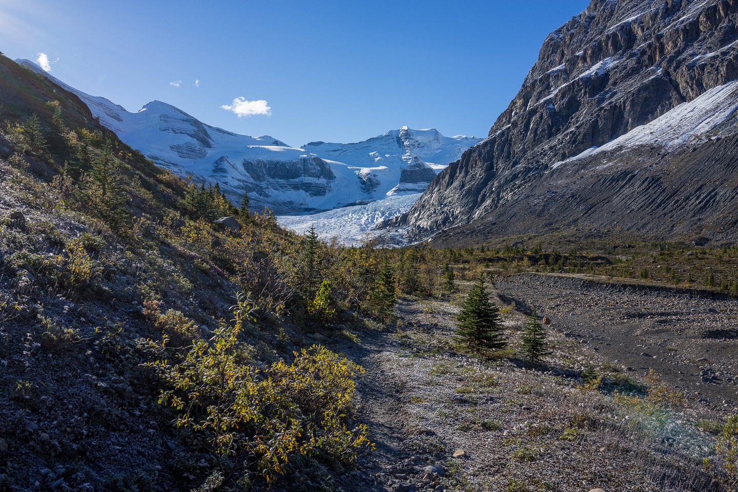 The trail approaches the Robson Glacier - still a long ways off though, considering 60 years ago it covered this area