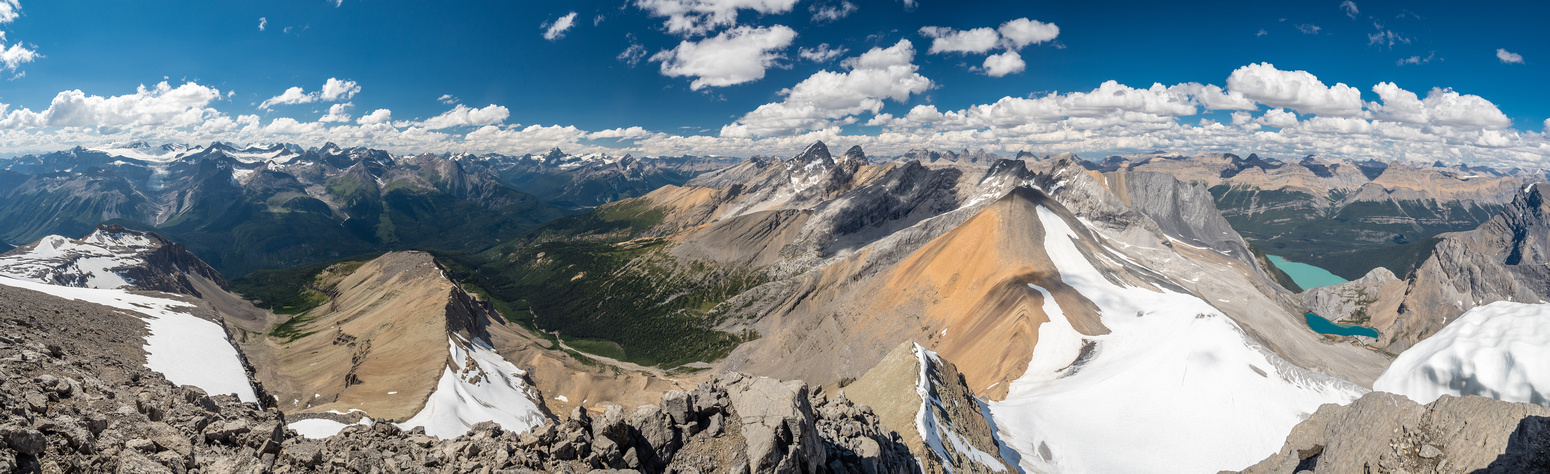 Mummery, Freshfield and Lyell Icefields and peaks along the divide to the north including Howse, Aiguille, Midway, Stairway, Aries and Ebon Peak. Mistaya and Capricorn Lakes at right.