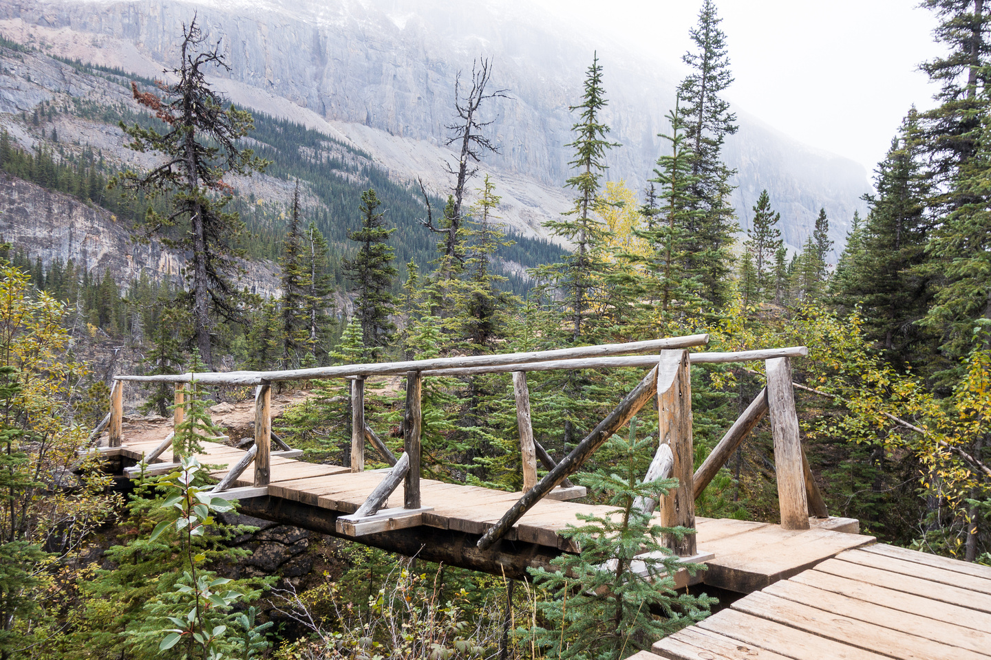 An interesting bridge on the section of trail between Emperor Falls and Falls of the Pool.