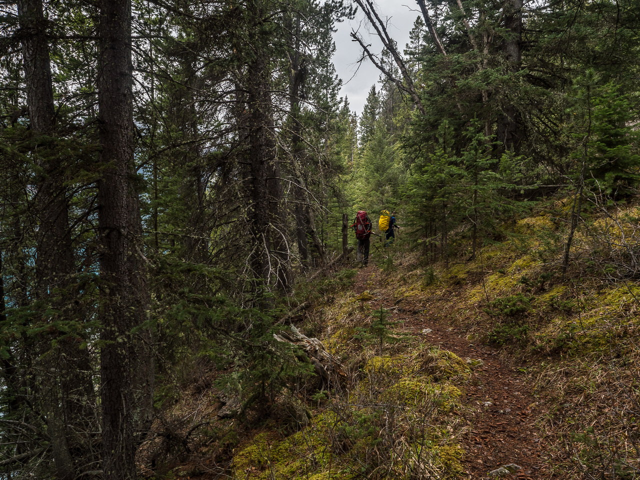 The trail around Glacier Lake does tend to gain and lose height more often then you'd like.