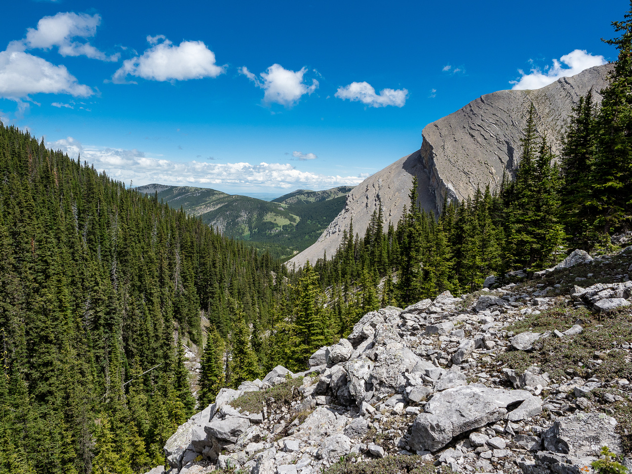 Looking towards our exit and Grass Pass from the busy ridge between drainages.