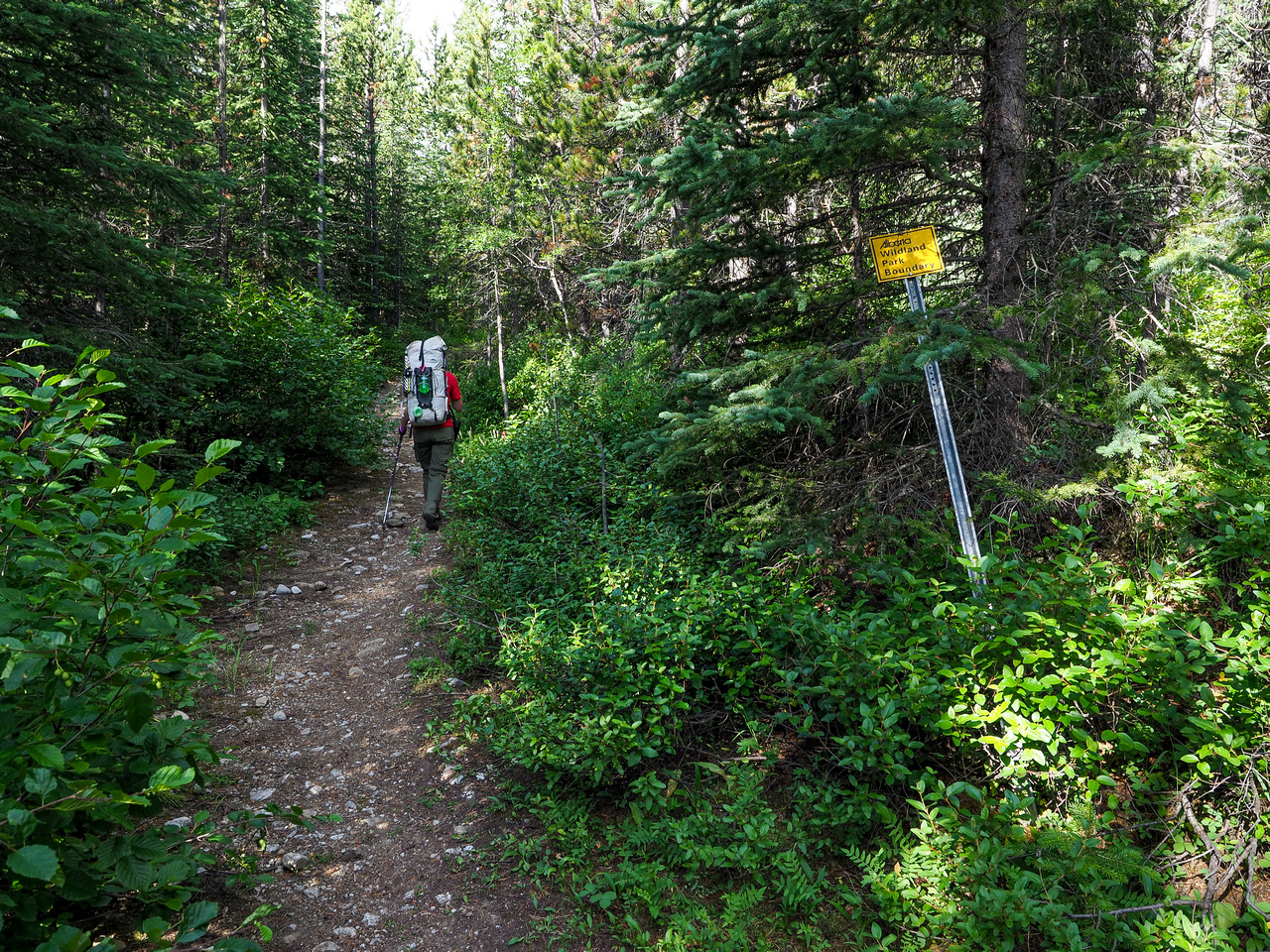 Entering the Don Getty Wildland Provincial Park.
