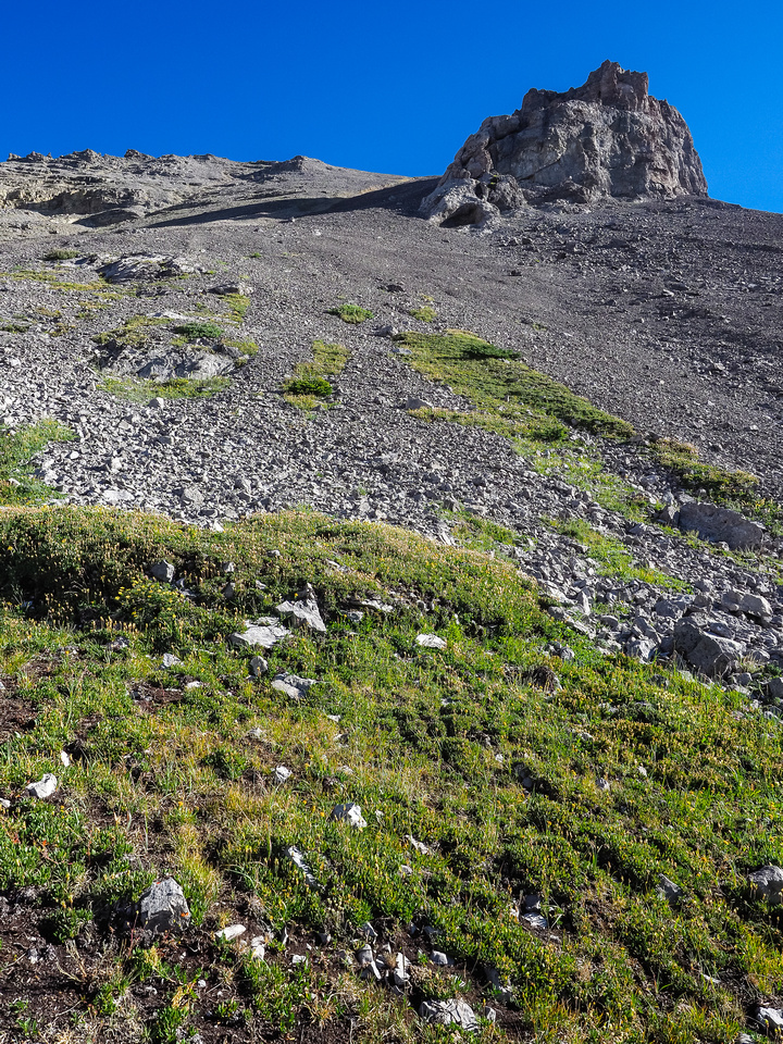 Looking up at our scree ramp access to the false summit of Muir which is just out of sight at upper left here.
