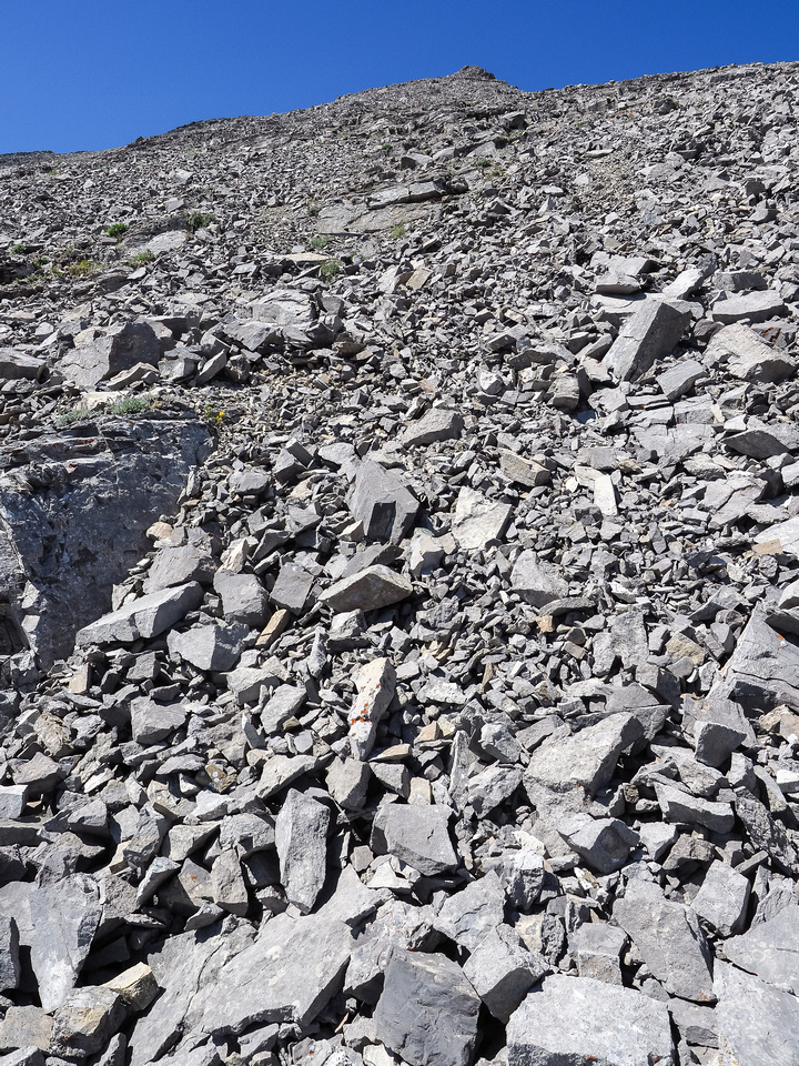 This is the rubble-fest on McPhail's south face. You can't avoid it so best deal with it!