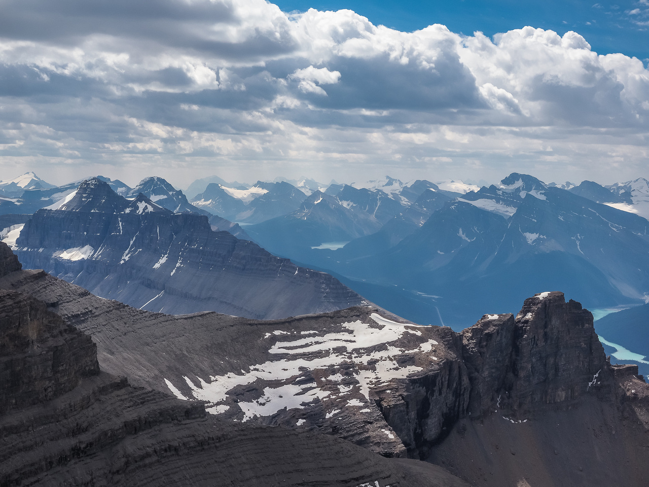 Distant views towards the Wapta Icefields with Mount Noyes in the foreground left.