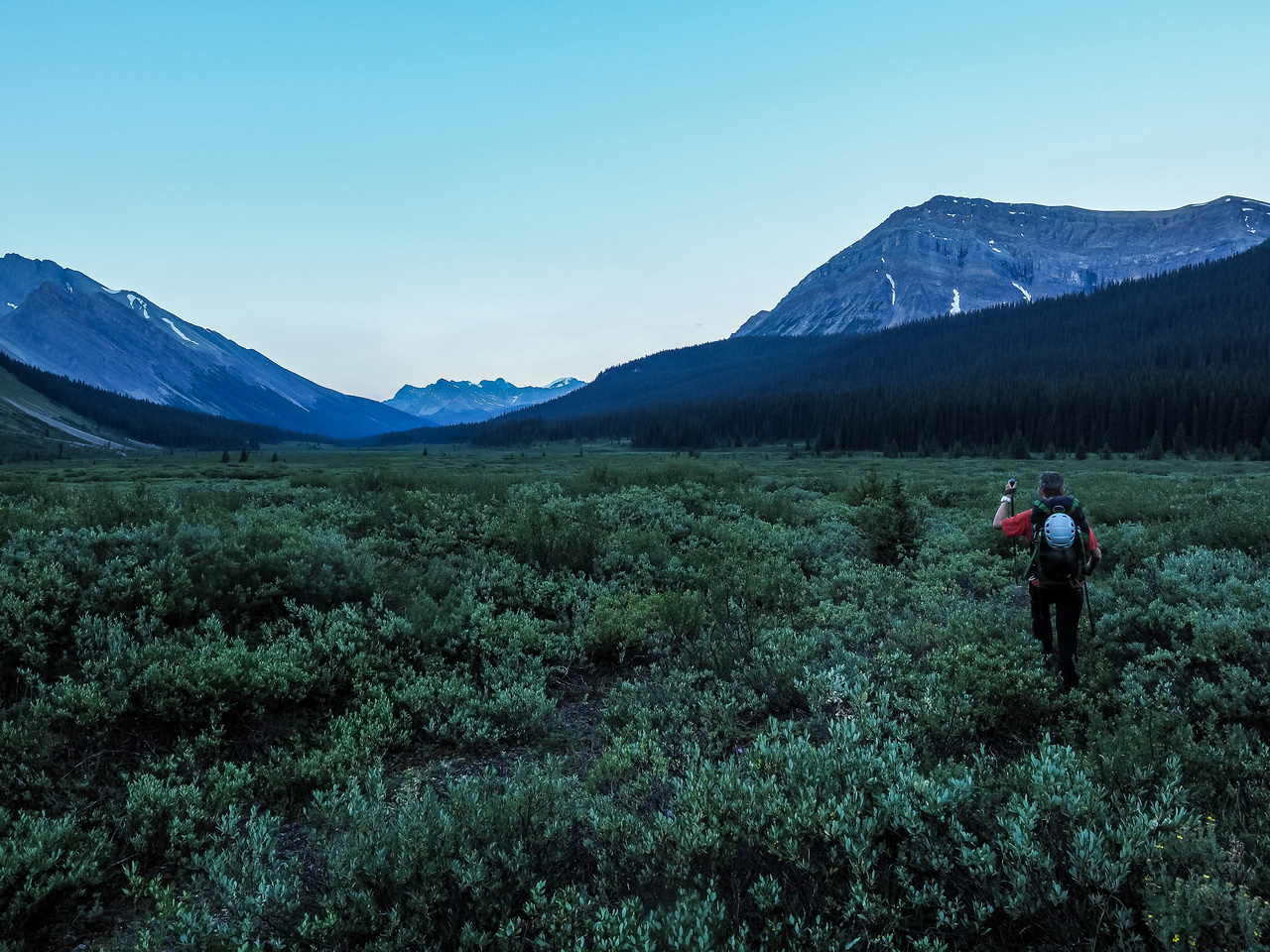 Recrossing the flats before Three Brothers Creek in distinctive blue early morning lighting.