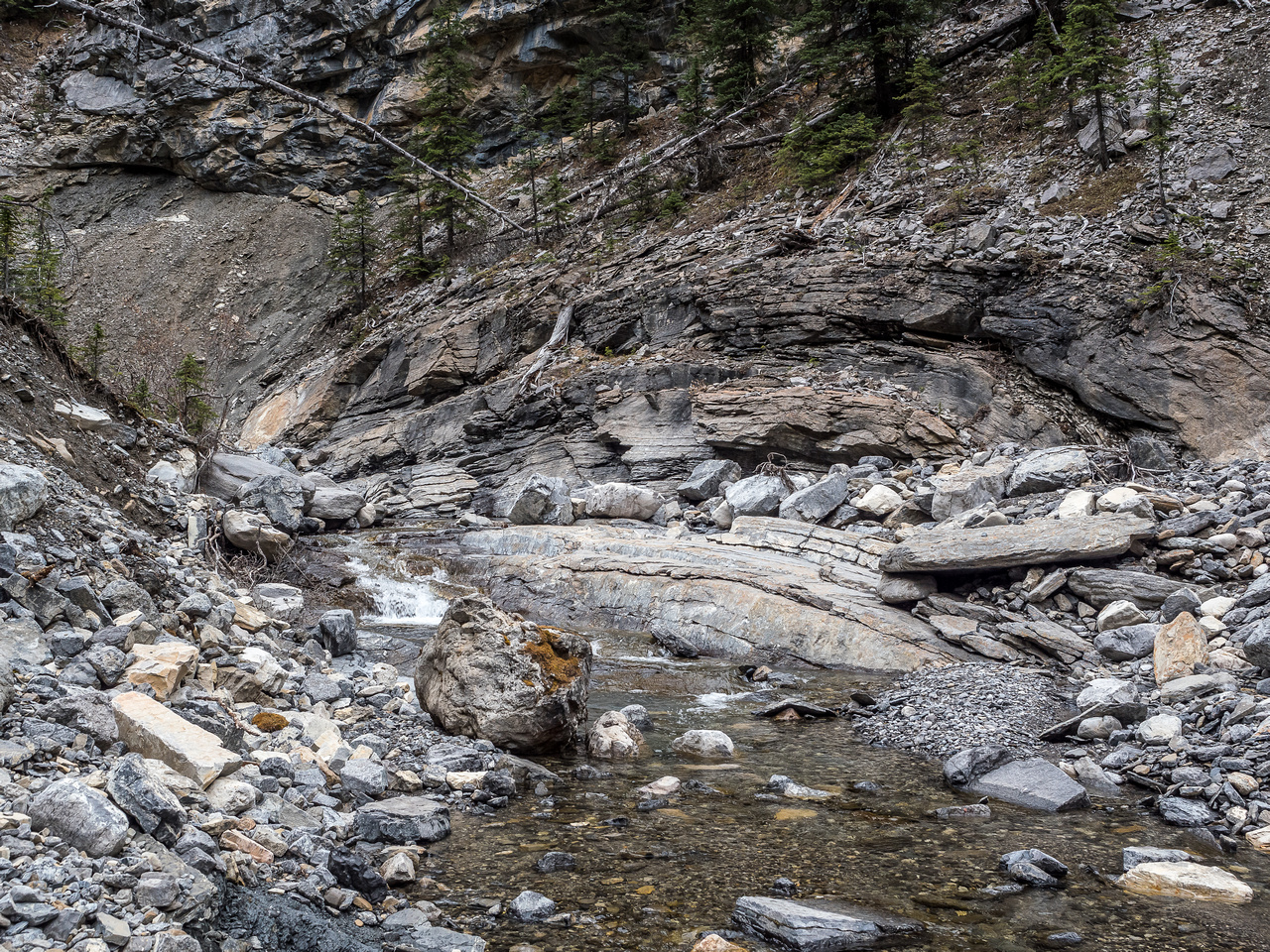 Both geologists got very excited by this obvious anticline along the creek.