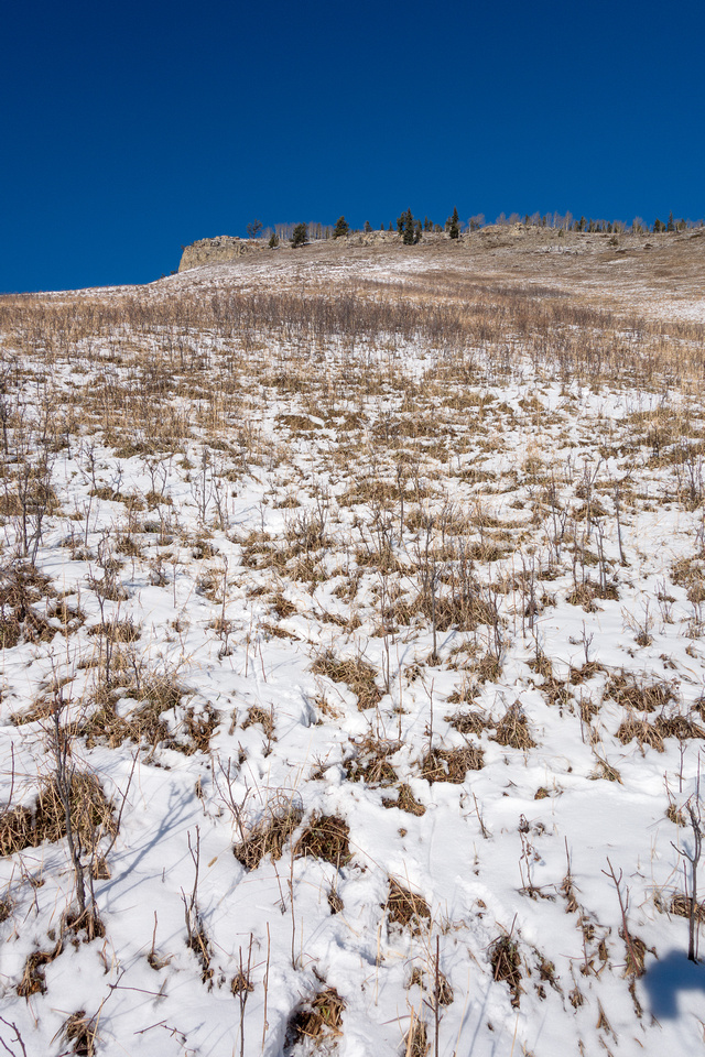 The grassy slope to the ridge. You can head straight up or go to climber's right and then back left on gentler slopes.