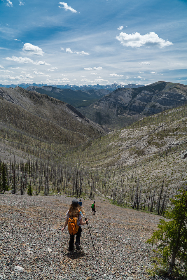 One of the best scree runs I've ever had! And it's virgin - no Yamnuska here!