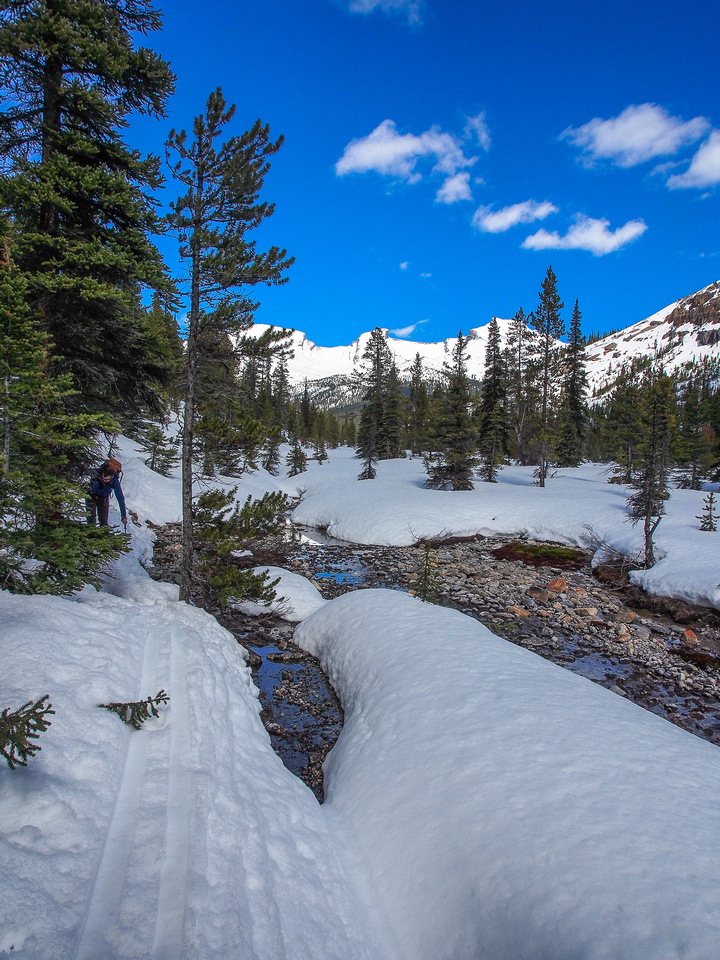 Ian tries not to fall in the creek on the way back! The snow was quickly losing it's base in the valley bottom.