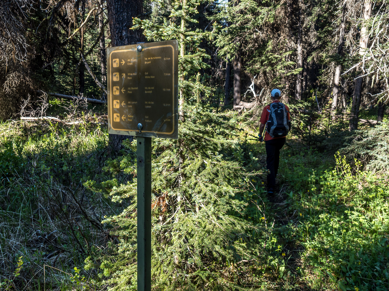 Branching onto the much smaller and less traveled White Man Pass trail.