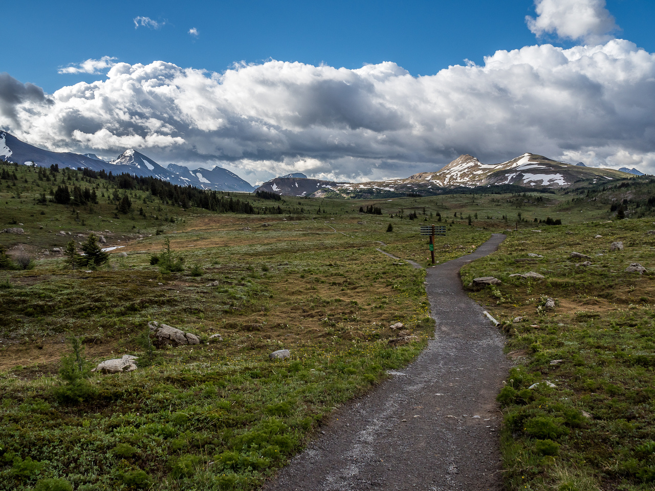 Sunshine Meadows awaits. We'll take the much smaller left hand trail towards Citadel Pass from here.