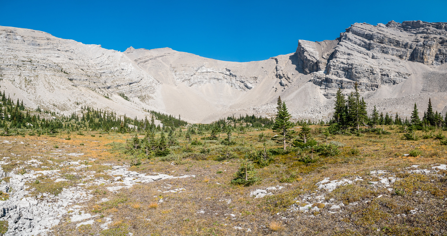 Looking back to the summit as we exit the lovely alpine meadow. Lots of grizzly diggings here!