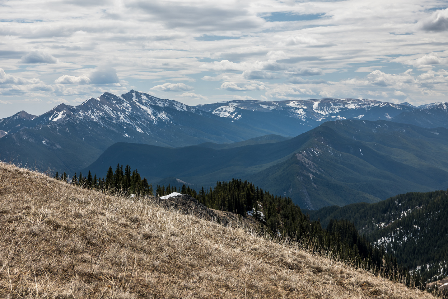Looking over Mount Mann towards Mount Burke and Plateau Mountain.