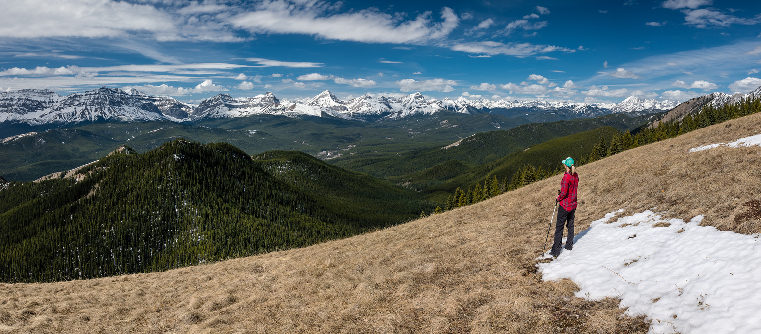 Great views from the open grassy slopes just west of the summit. Cat Creek Hills at left with the High Rock Range in the distance at Highwood Pass peaks at distant right.