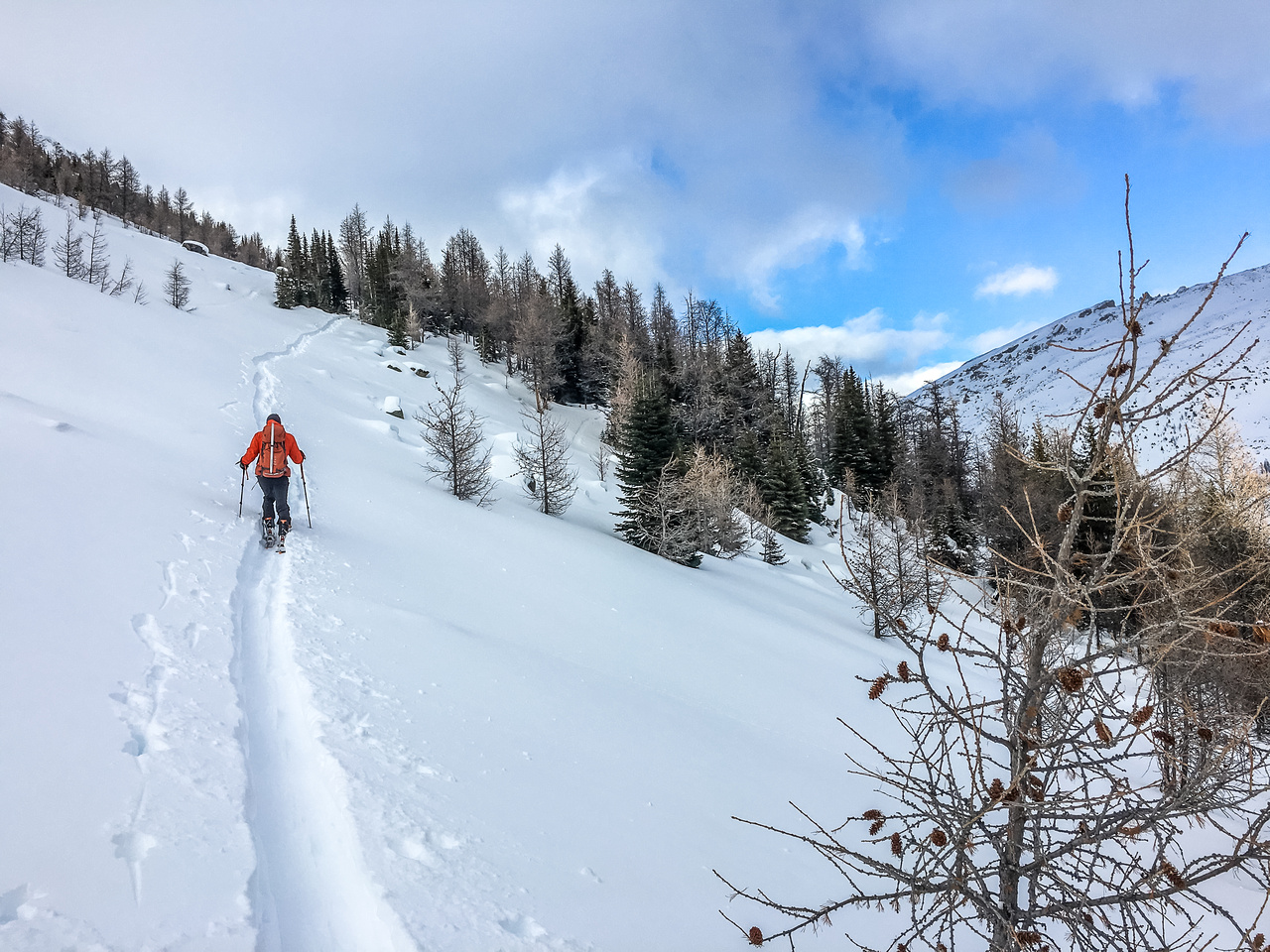 We found some old ski tracks on this slope - probably from a Pumpkin Traverse. Our descent track worked great on return.